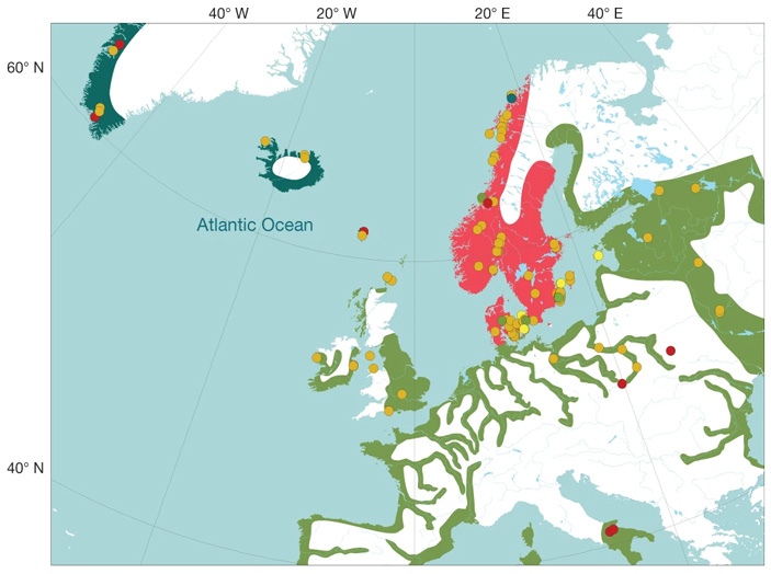 Эпоха викингов всвете палеогенетики