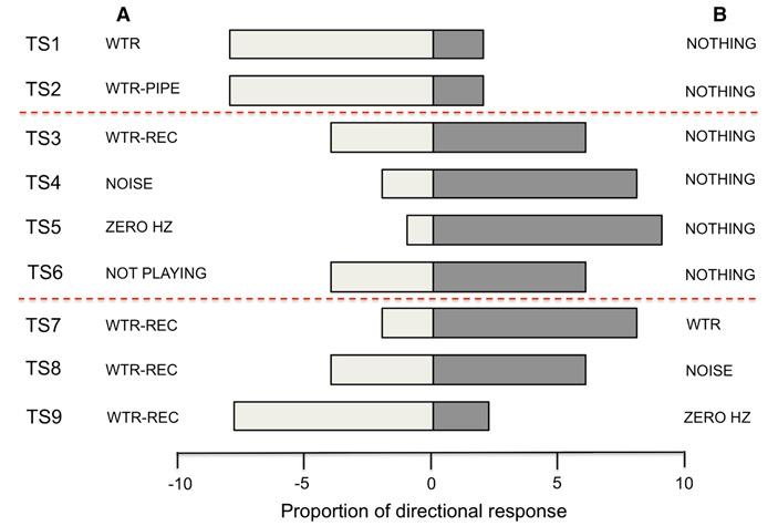 Рис. 4. Результаты опытов, показывающие, сколько проростков пустили корни в ту или иную сторону