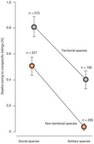 Рис. 2. Социальность и территориальность положительно коррелируют с летальной агрессией