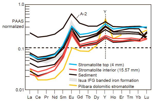 Спектры редких элементов в древнейших строматолитах Дрессер и Исуа