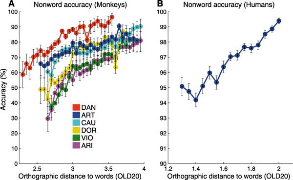 Зависимость точности определения неслов от орфографического сходства между несловом и известным словом у павианов и людей