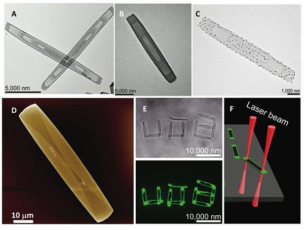 Снимки прямоугольных мицелл