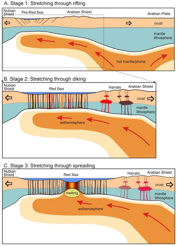 Рис. 6. Три этапа перехода от континентального рифтинга к океаническому спредингу