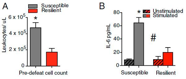 Рис. 3. Содеражание лейкоцитов и интерлейкина-6 в крови мышей