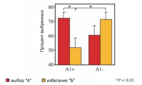 Люди с пониженным числом дофаминовых рецепторов(А1+) научились уверенно выбирать «хороший» символА (высокий красный столбик слева), но не научились избегать «плохого» символаБ (низкий желтый столбик). Люди снормальным числом дофаминовых рецепторов(А1–) одинаково хорошо научились тому и другому (различия между двумя правыми столбиками— желтым и красным— статистически не достоверны). Достоверные различия отмечены звездочками. Рис. из обсуждаемой статьи вScience