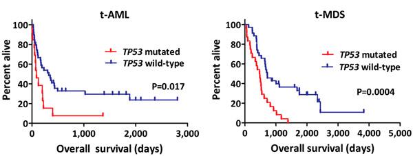 <b>Рис. 1.</b> Выживаемость больных «терапевтическими» t-AML и t-MDS