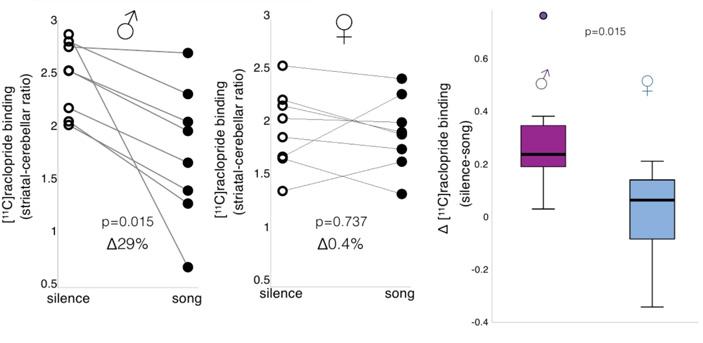 Рис. 3. Результаты эксперимента по анализу активности дофаминовых сигналов в мозге птиц методом позитронно-эмиссионной томографии