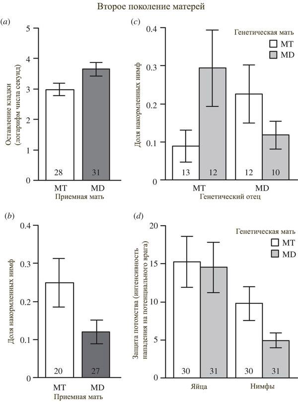 Рис. 2. Различные проявления заботы о потомстве во втором поколении уховерток