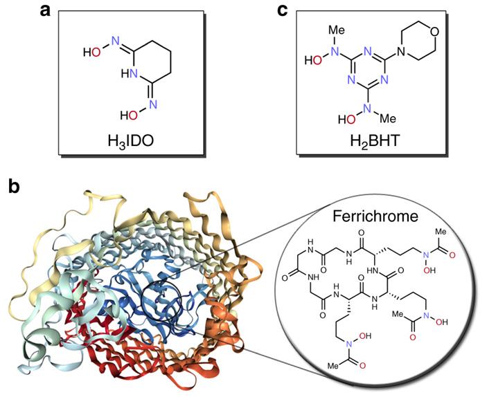 Лиганды для селективного распознавания металлосодержащих ионов