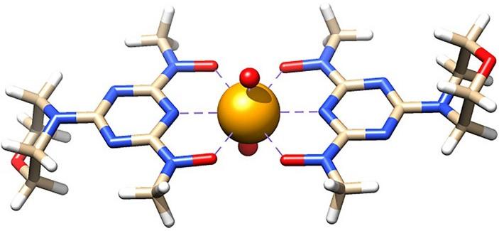 Взаимодействие хелатирующего лиганда H2BHT с уранил-катионом