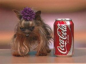 Удивительная вариабельность размеров удомашних собак долгое время была загадкой для генетиков (фото с сайта www.eglobe1.com)