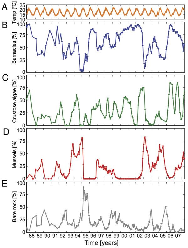 Рис. 2. Зарегистрированная динамика изменения разных параметров экосообщества