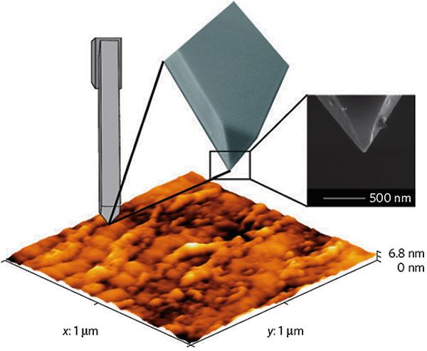 Рис.3. Топография (рельеф поверхности) пленки ниобия, задействованной в эксперименте. Размер пленки 1×1мкм. Снимок получен спомощью атомно-силового микроскопа. Вверхней части рисунка— схематическое изображение иглы атомно-силового микроскопа и его снимок в правой части, полученный сканирующим электронным микроскопом. Рисунок из обсуждаемой статьи в Nature Materials