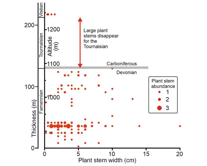 Позднедевонское вымирание могло быть спровоцировано взрывом сверхновой