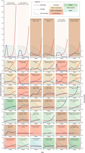 Рис. 1. Динамика старения у разных организмов
