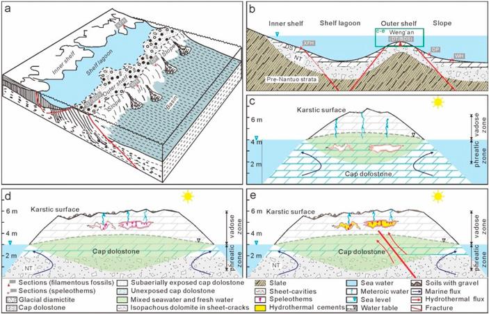 Грибы жили на суше уже 635 миллионов лет назад