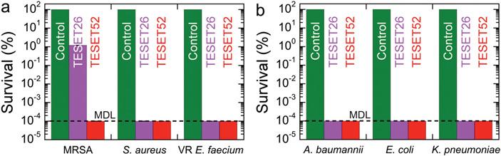 Полиэлектролит TESET убивает устойчивые клекарствам микробы наповал