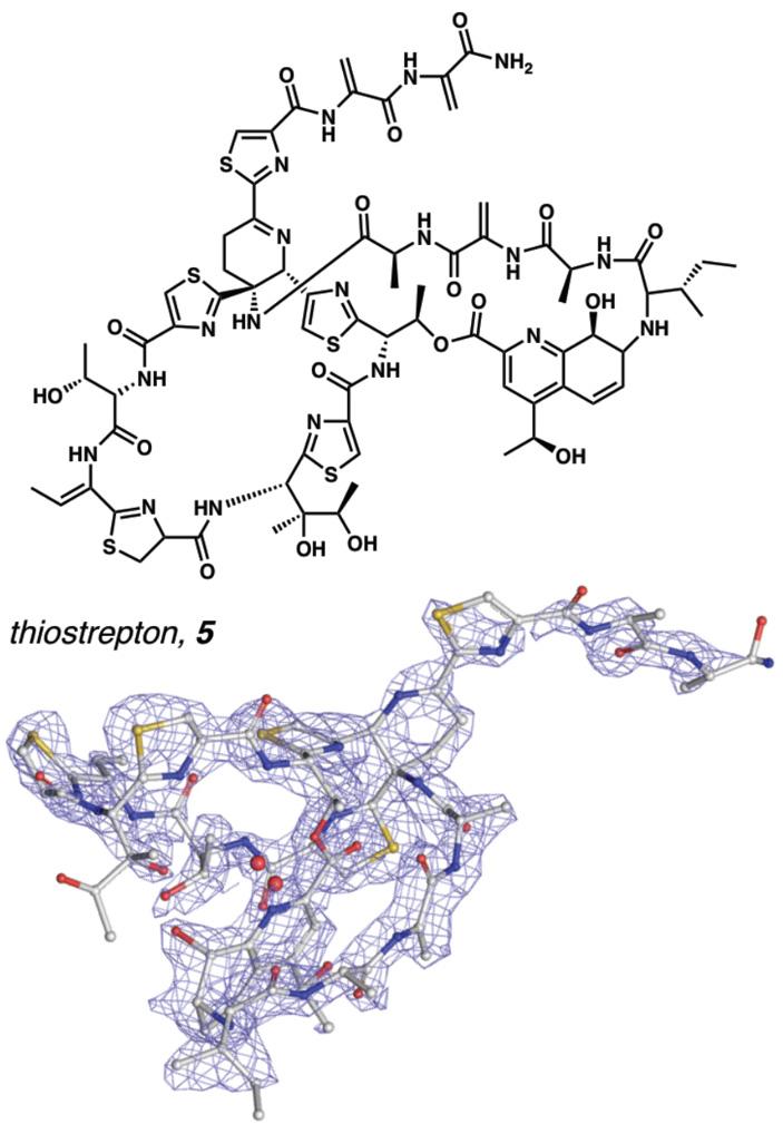 Рис. 2. Структура молекулы тиострептона, полученная методом MicroED