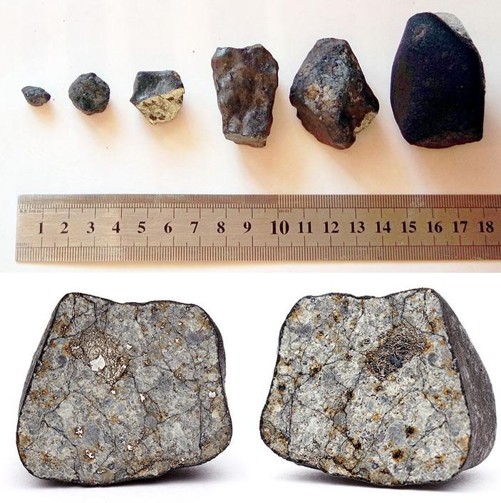 В Челябинском метеорите найдена космическая ДНК