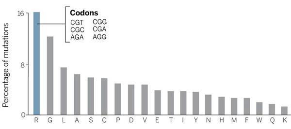 Рис. 2. Относительная частота аминокислотных замен учеловека