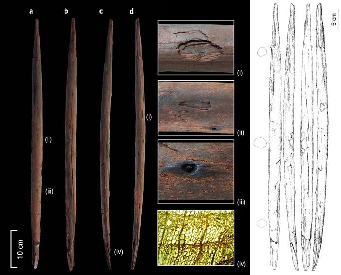 ВГермании найдена охотничья метательная палка возрастом 300000лет