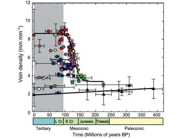Изменение плотности жилкования листьев (общая длина жилок в мм на 1кв. мм листа) за последние 400млн лет. Современность— начало координат (шкала времени инвертированная: справа налево). Рис. из обсуждаемой статьи: Brodribb and Feild, 2010// Ecology Letters. V.13. P.175–183