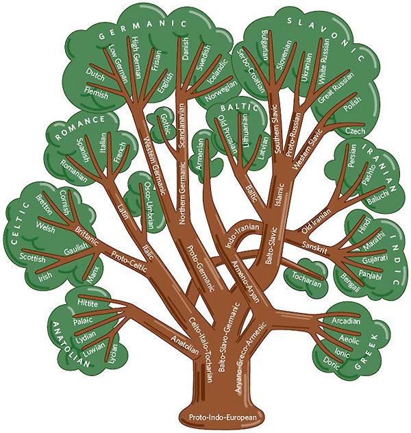 http://elementy.ru/images/news/tree_indo-european_languages_600.jpg