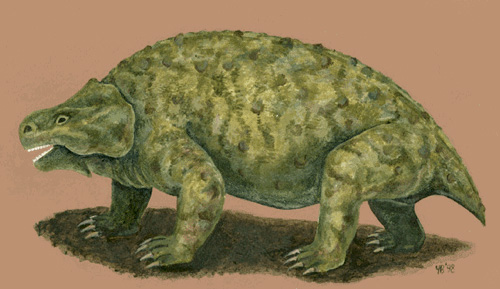 Парейазавр Deltavjatia vjatkensis, живший на территории России вконце пермского периода