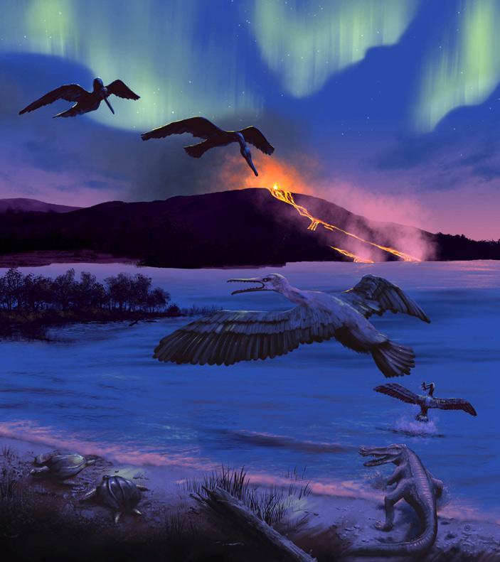 Рис. 3. Художественная реконструкция орнитуроморфной птицы Tingmiatornis arctica