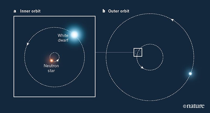Схема тройной звездной системы PSRJ0337+1715. Тот факт, что не было обнаружено деформации внутренней орбиты (что должно было бы произойти вслучае разницы ускорений пульсара и белого карлика), подтверждает эйнштейновскую теорию гравитации (общую теорию относительности)