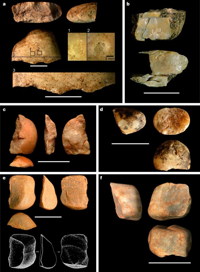 Рис. 2. Каменные «изделия» капуцинов