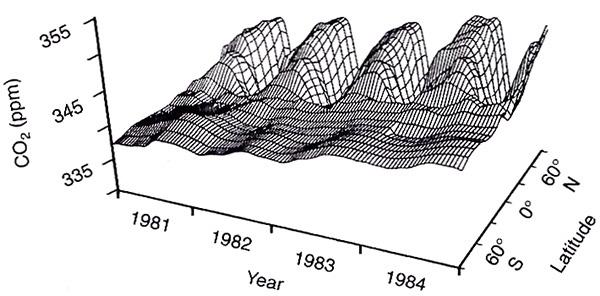 Рис.2. Сезонные колебания содержания CO ватмосфере на разных широтах за 1981–84гг. Из: ConwayT.J., etal., 1988 // Tellus. V.40, B. P.81–115