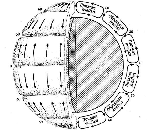 Рис.5. Идеализированная обобщенная схема ячеистой циркуляции атмосферы. Из: «Биосфера». Сб.статей / Под ред. М.С.Гилярова. М.:Мир, 1972