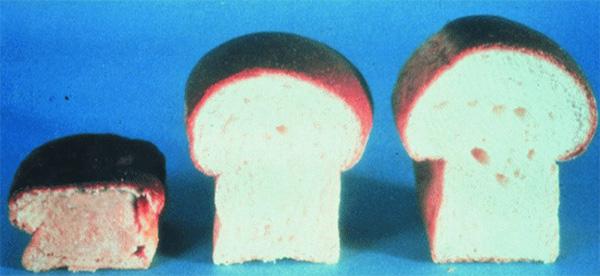 Рис. 8. Качество хлеба зависит от содержания белков клейковины— глютенов. Слева— хлеб с низким, в центре— с нормальным и справа— с повышенным содержанием глютенов. Изображение: «Потенциал. Химия. Биология. Медицина»