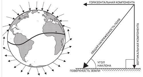 Птичий компас. Существует предположение, что птицы при перелетах ориентируются по горизонтальной и вертикальной компонентам магнитного поля. Изображение: «Популярная механика»