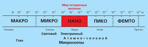 Рис. 2. Шкала размеров, примерные величины различных объектов и методы их визуализации. Изображение: «Экология и жизнь»