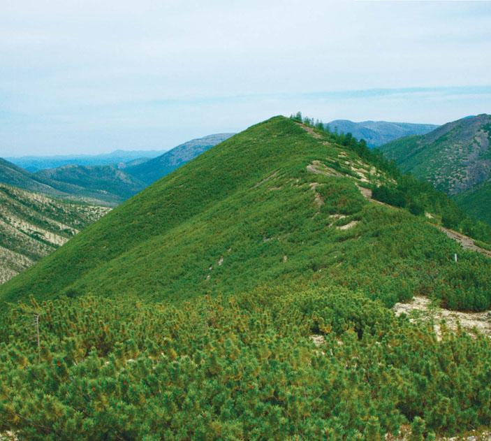 Южный склон хребта Большой Анначак («Природа» №9, 2014)