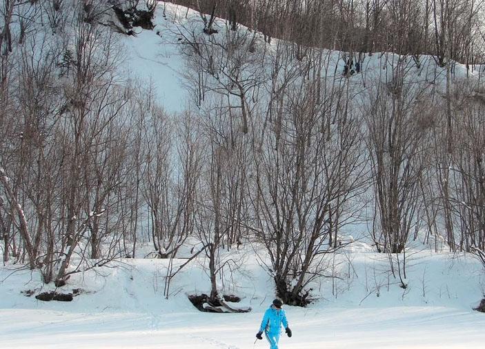 Склон речной террасы р. Найбы высотой 27 м («Природа» №8, 2019)
