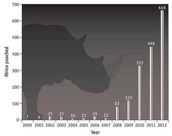 Гибель носорогов от рук браконьеров вЮАР с2000-го по 2012год