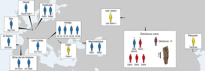 Рис. 1. Местонахождения древних Homo, чью принадлежность к денисовцам, неандертальцам или сапиенсам удалось определить по ядерной ДНК