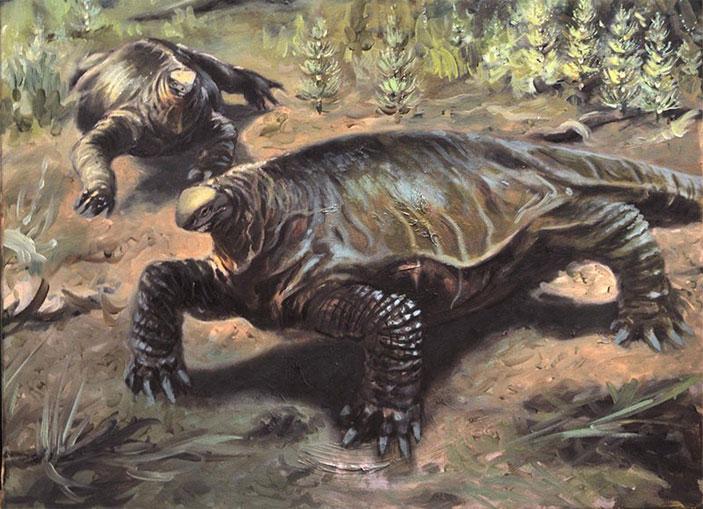 Реконструкция Alierasaurus ronchii
