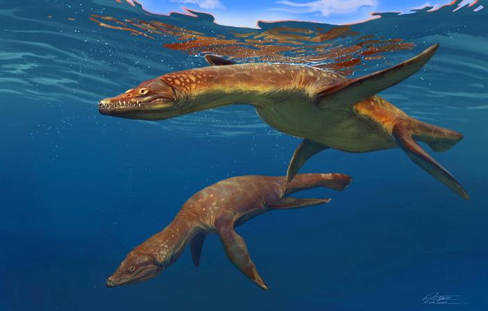 Раннеюрские морские плезиозавры Rhomaleosaurus